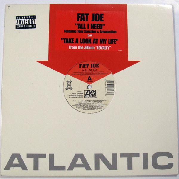 All I Need Fat Joe Video 43